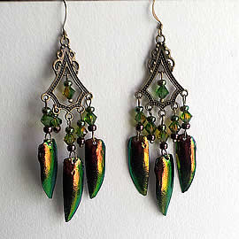 d6b3-015 Earrings 6 beetlewings+Swarovski biconic beads +bronze colour stampings