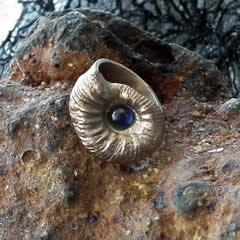 292K-010 Bronze Ring : Bronze Ammonite + blauer Lab-Korindon Deutsche Gr=15 klein